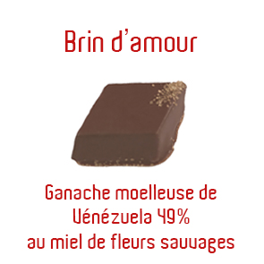 brin-damour-copie