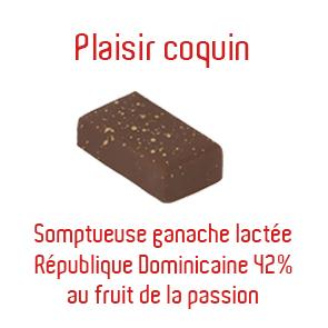 plaisir-coquin-copie