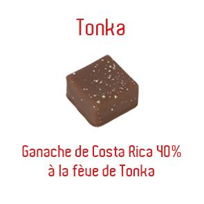 tonka-copie