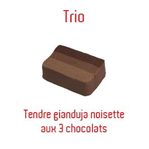 trio-copie